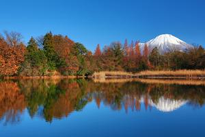 #6 Autumnal leaves and Mt. Daisen