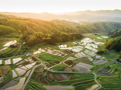 #15 Sannoji Rice Terraces