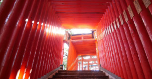Taikodani Inari Shrine