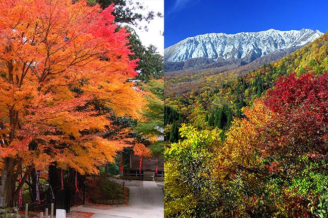 山陰の紅葉