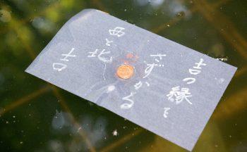 八重垣神社(鏡の池占い)