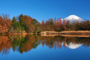 (6) 紅葉と大山